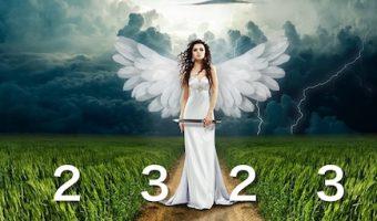 エンジェルナンバー2323の希望を知らせる7つのメッセージ
