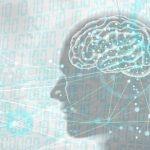 脳には男性脳と女性脳がある。男性脳な人の7つの特徴