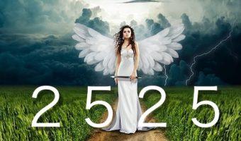 エンジェルナンバー2525〜史上最大の恋のメッセージ〜ツインレイ