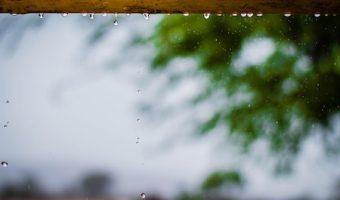 夢占いでわかるあなたの心理、夢の中で雨に遭った時の5つのメッセージ